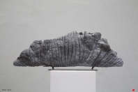 """""""Coelacanthe"""" - Granite - 33 x 90 cm - 2008"""