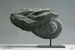 Serpentine - 24 x 30 x 10 cm - 2005