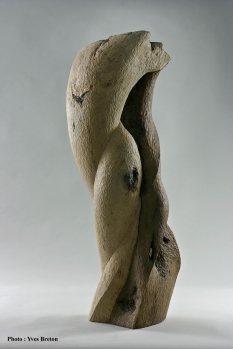 Poirier - 90 x 25 x 38 cm - 2005