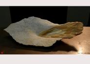 Marbre : Jaune de Sienne - 61 x 34 x 11 cm - 2014