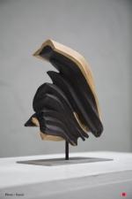 """Concrétion"" - Ébène - 22 x 15 x 8 cm - 2007"