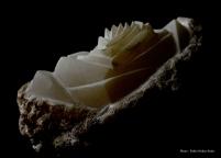 Pierre : Albâtre - Dimensions : 14 x 27 x 17 cm - Année 2017