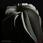 Marbre de Carrare – 56 x 65 x 34 cm - 2011 - Vendu au Museum Samsung de Séoul.