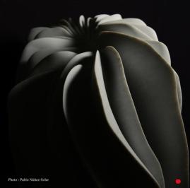 Pierre : Marbre de Carrare – Dimensions : 56 x 65 x 34 cm / Année 2011 - Vendu au museum samsung de Séoul.