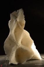 """""""Chevelure d'andromède"""" - Albâtre - 42 x 31 x 14 cm - 2014"""