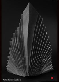 """Le phénix"" - Petit granite Belge - 56 x 40 x 27 cm -2017"